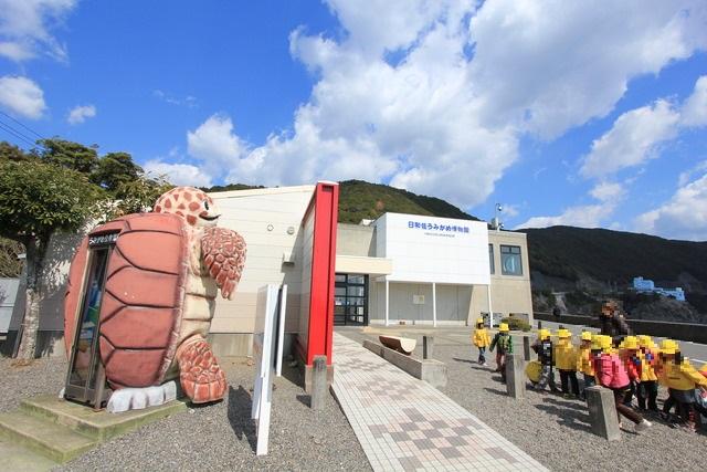 "Sea Turtle Museum ""Caretta""   IEP College :: Approved"
